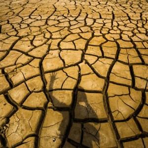 A Seca na Cantareira: Falta água e esperança em São Paulo